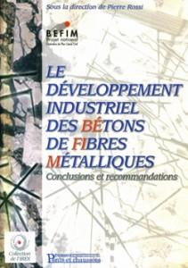 publication irex - befim